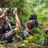 10 Remarkable Things to Do on a Uganda Safari